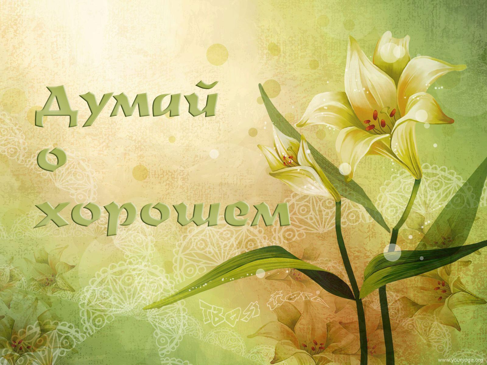 http://photo.youryoga.org/desk/image/youryoga134.jpg