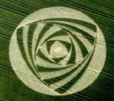 Следующая фотография кругов на поле